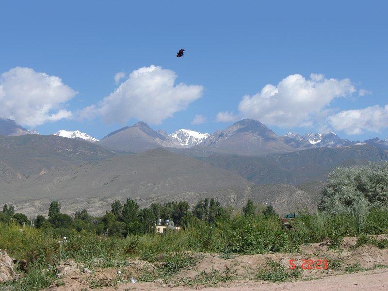 Горы в районе Чолпон-Аты, Иссык-Куль, Киргизия. Фото: Яндекс.Фотки / mikhail.pl
