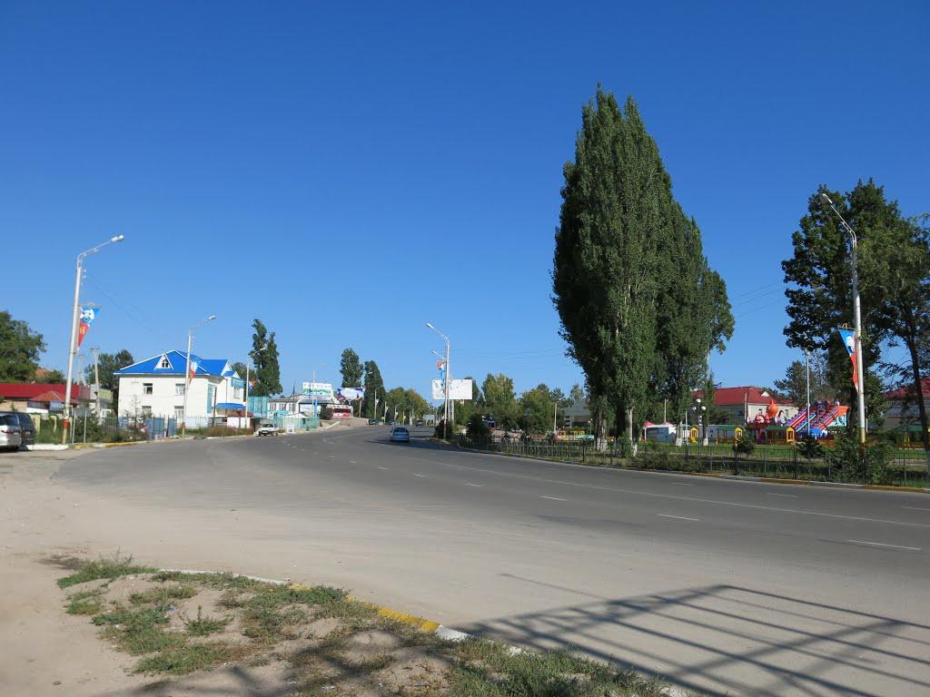 Чолпон-Ата, Киргизия. Фото: Panoramio.com / Serg Voronko