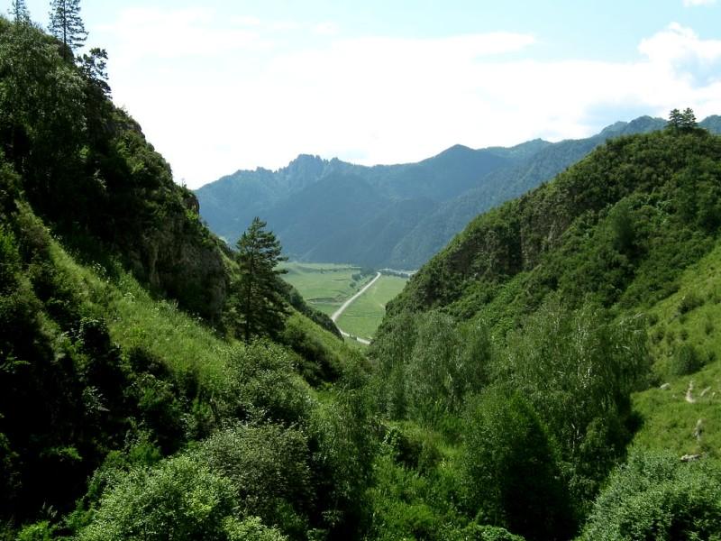 Алтай в окрестностях Чемала