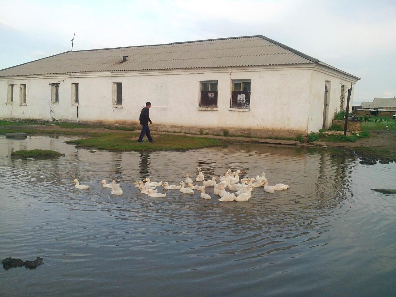 Казахстан, Островное