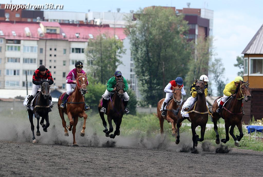 Скачки на Иркутском Ипподроме. Фото: hippodrom38.ru