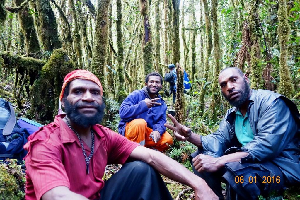 Полинезия и папуасы