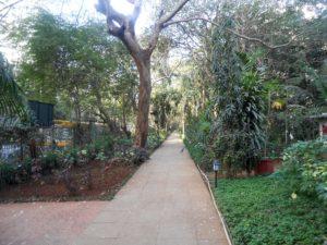 Индия, Мумбаи